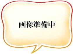 画像1: 画仙紙  良寛 全紙(70×138cm)100枚